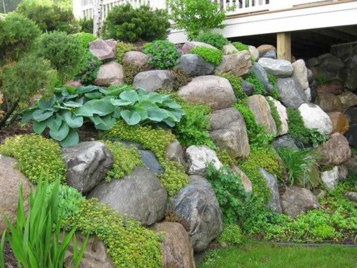 une-petite-colline-de-pierres-idée-comment-faire-une-rocaille-vegetation-plantes-vertes-idée-amenagement-exterieur-maison