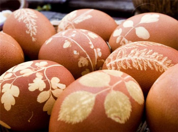 Beau oeuf de Pâques décoration sans coloration simple avec plantes cool idee healthy