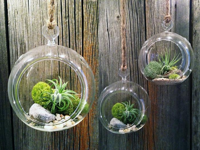terrarium suspendu, cailloux décoratifs, boule en verre à suspendre, plantes vertes, terrarium bocal