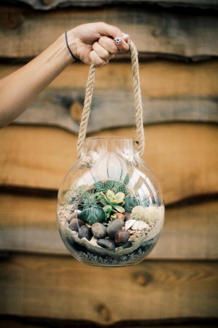 terrarium plante, décoration verte, cactus, cailloux, terrarium bocal, jardin miniature