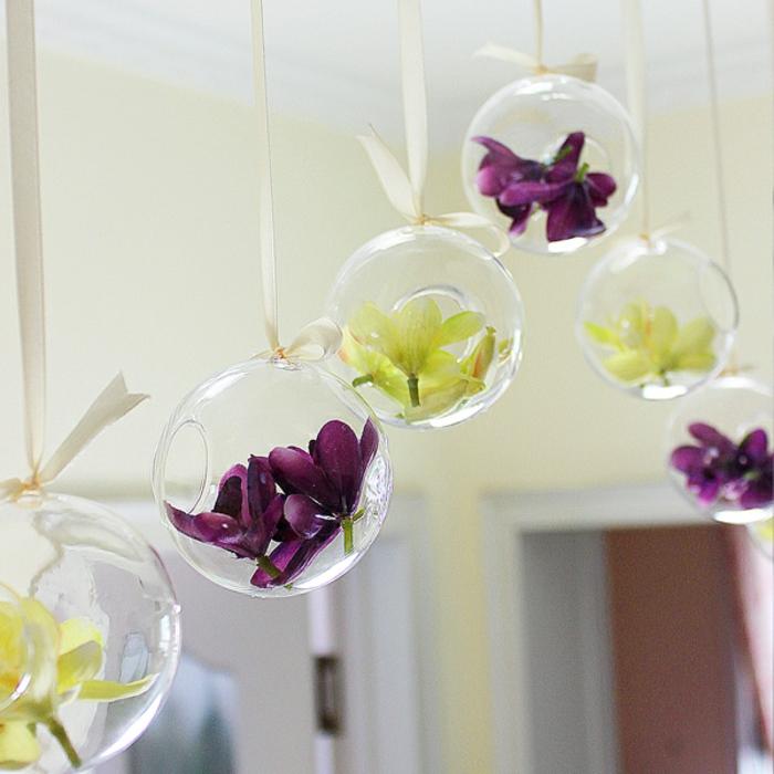 plante en bocal fermé, murs jaunes, plafond blanc, terrarium bocal, jardin miniature