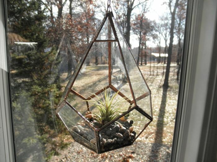 terrarium suspendu, récipient en verre, air plant, cailloux décoratifs, jardin miniature