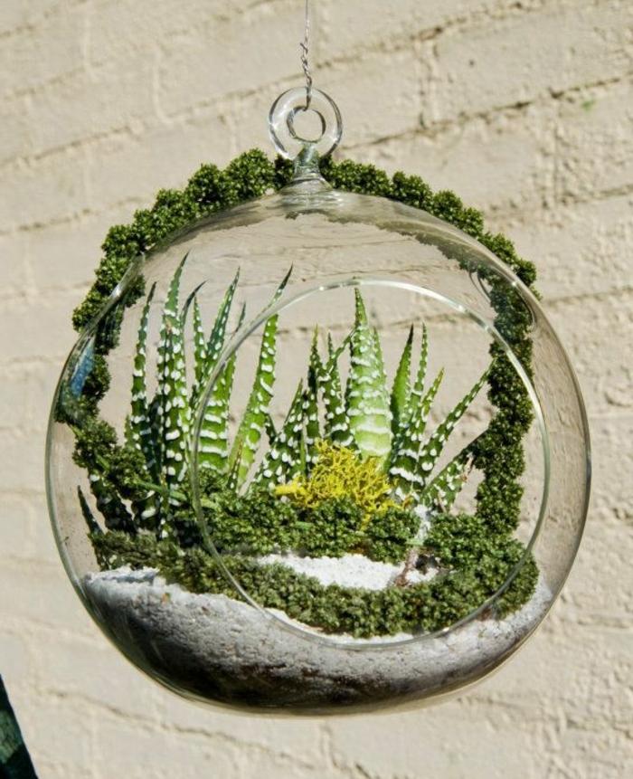 terrarium plante, sable blanc, cailloux, boule en verre à suspendre, terrarium végétal