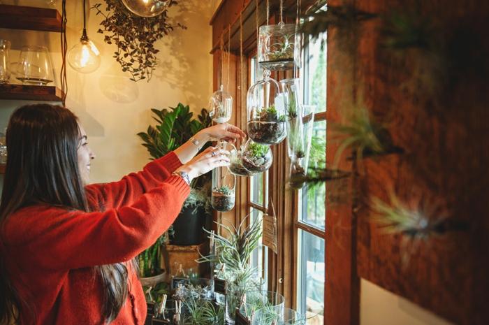 terrarium plante, gilet rouge, fille brune, étagère en bois, lampes suspendues, jardin miniature