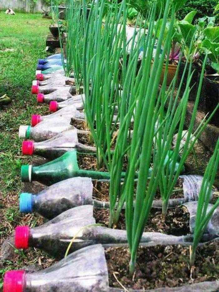 bricolage bouteille plastique, pots de fleurs diy pour le jardin
