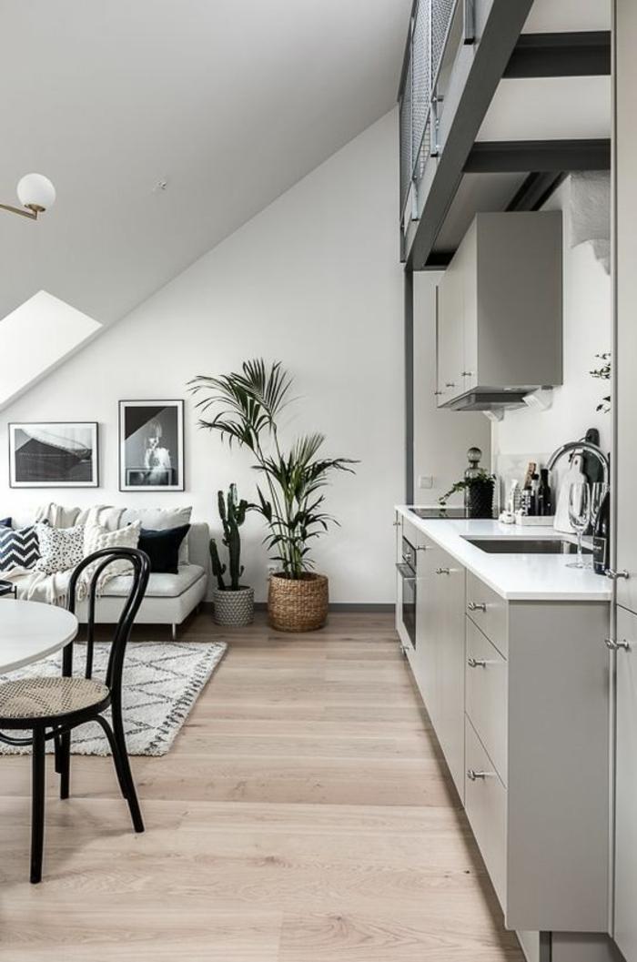 déco minimaliste, intérieur attique, cuisine et salle de séjour scandiaves