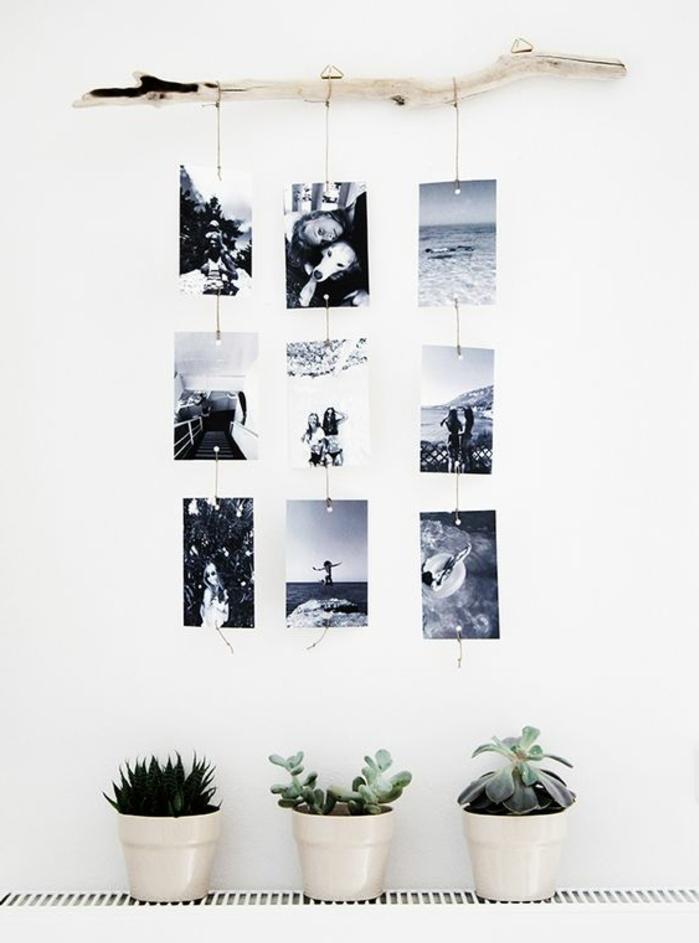 deco en bois florré et photos en noir et blanc suspendues, plantes, mur couleur blanche, DIY déco chambre à faire soi meme