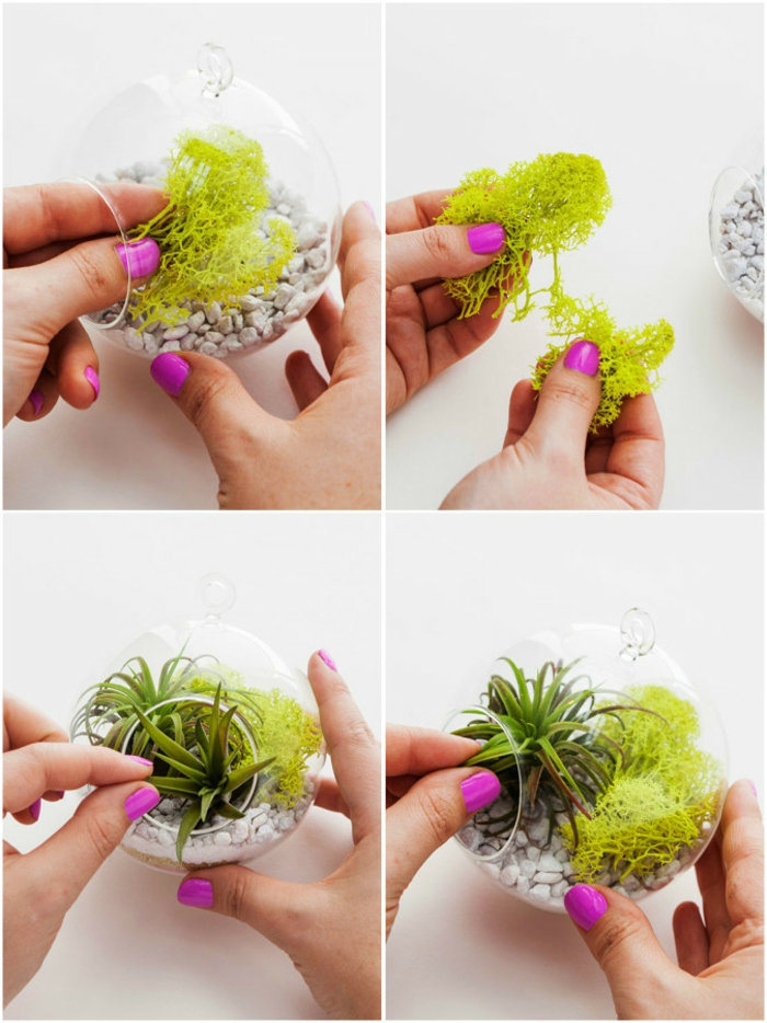 terrarium végétal, comment faire un jardin miniature, manucure violette, diy