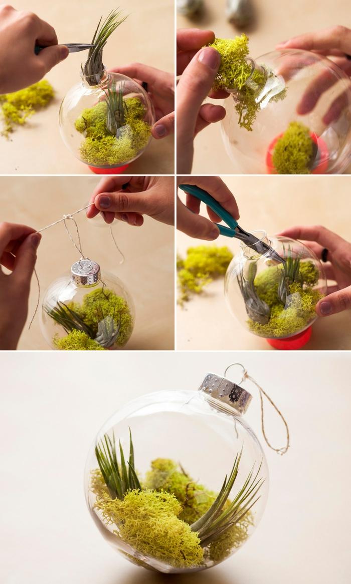 terrarium suspendu, jardin miniature, boule en verre à suspendre, diy décoration, paire de ciseaux
