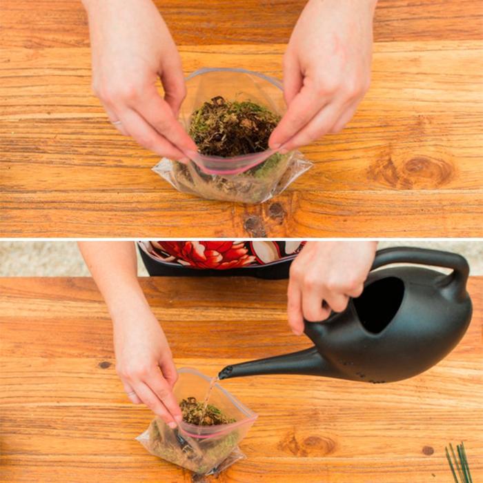 terrarium végétal, fleurs artificielles, arrosoir noir, jardin miniature
