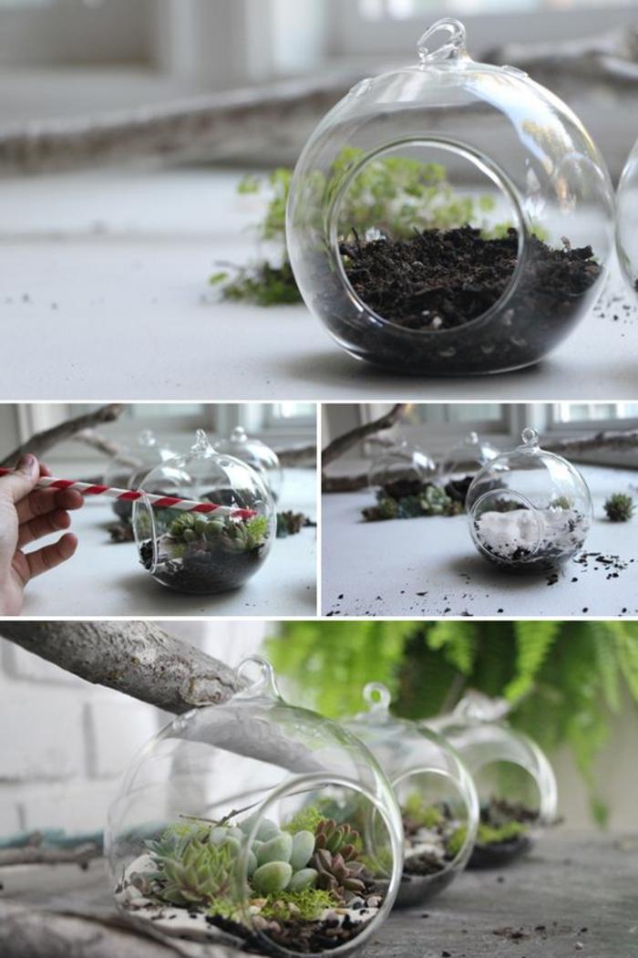 terrarium suspendu, boule en verre à suspendre, faire un terrarium, terrarium plantes grasses