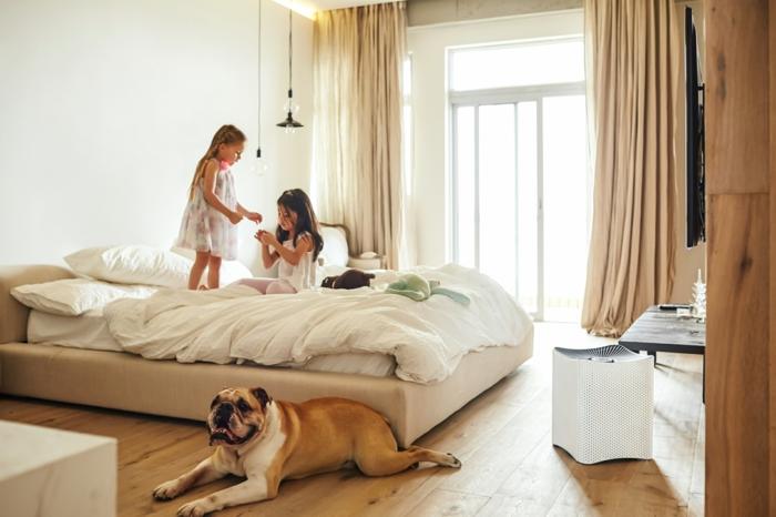 homestaging, murs de la chambre à coucher beige, parquet stratifié, purificateur de l'air, grandes fenêtres, rideaux longs