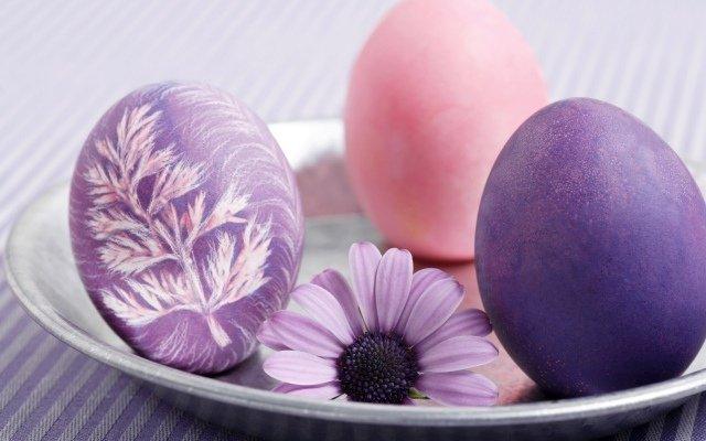 Oeufs de Pâques joliment décorés à l'aide de herbes et peinture violet et rose