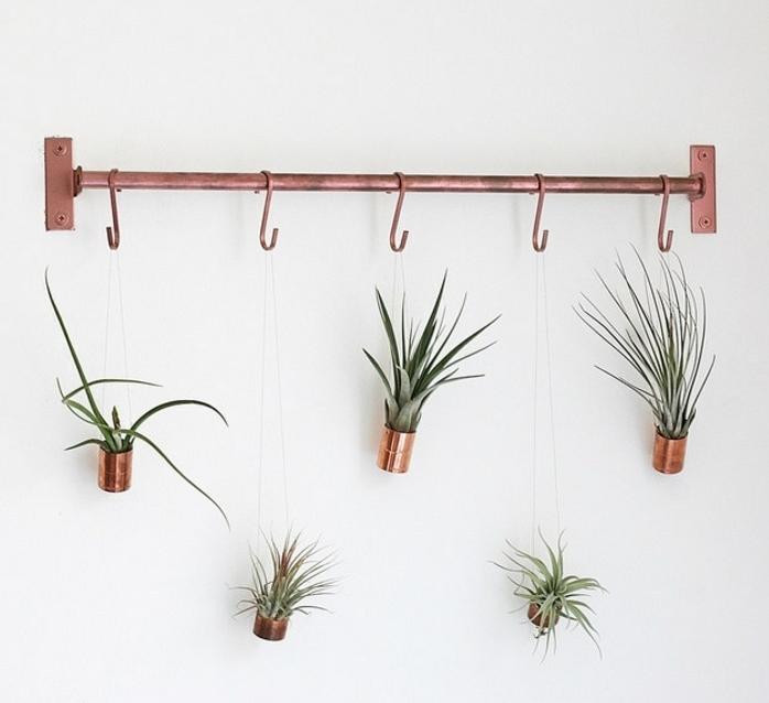 idée déco patère éclat cuivre, plantes suspendues succulents dans des boites de conserves customisées à la peinture cuivre, diy facile