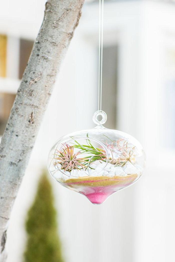 terrarium suspendu, boule en verre à suspendre, diy décoration, faire un terrarium