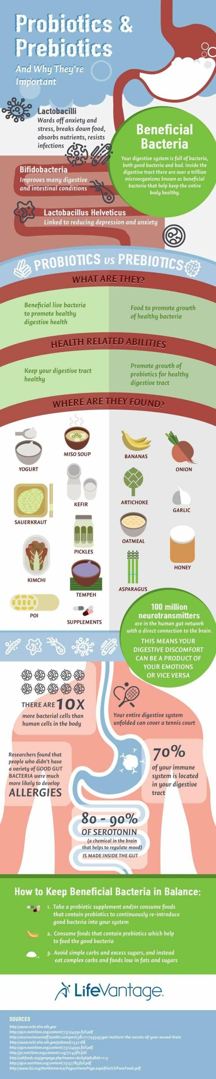 1001+ Idées pour utiliser les probiotiques + et leurs