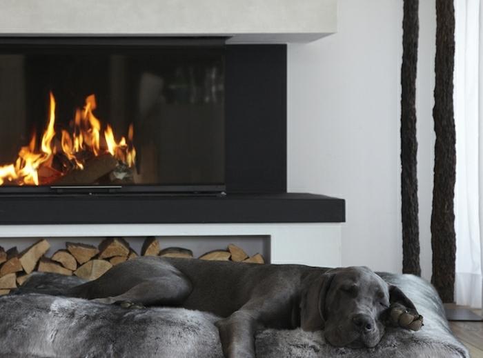 le nid douillet, chien endormie, cheminée noire, parquet en bois