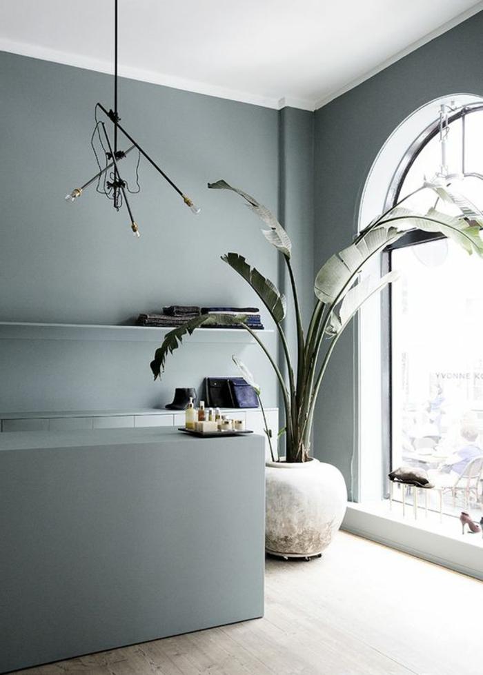 peindre un mur, fenêtre arc et grande plante verte