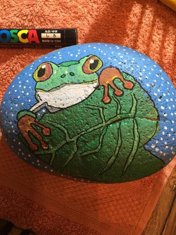 peinture galet, grenouille dessinée sur une pierre