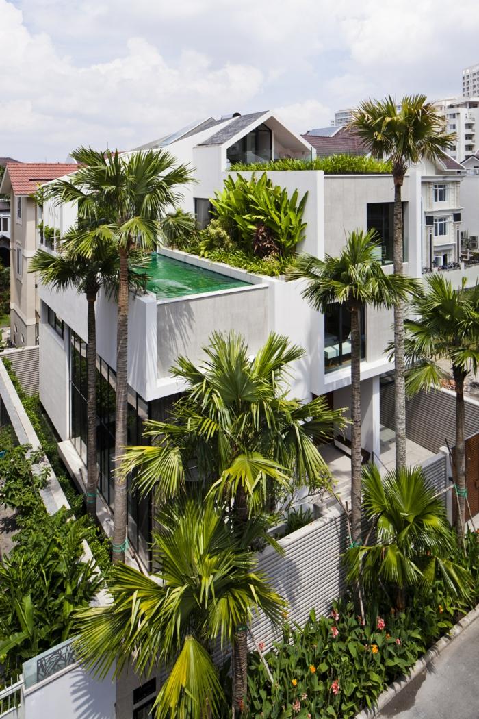 piscine surélevée, palmiers, piscine en béton, façade de maison blanche, piscine hors sol profonde