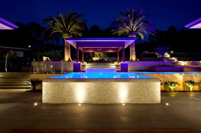 piscine hors sol, éclairage de piscine violette, palmier tropical, clôture en verre