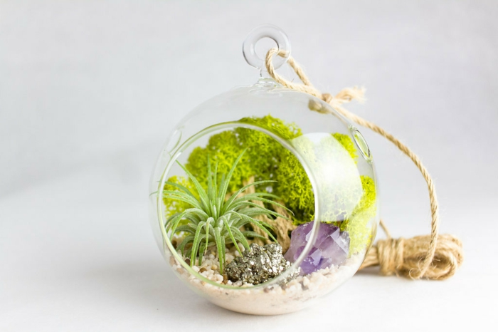 boule en verre à suspendre, cailloux décoratifs, corde longue, terrarium plante