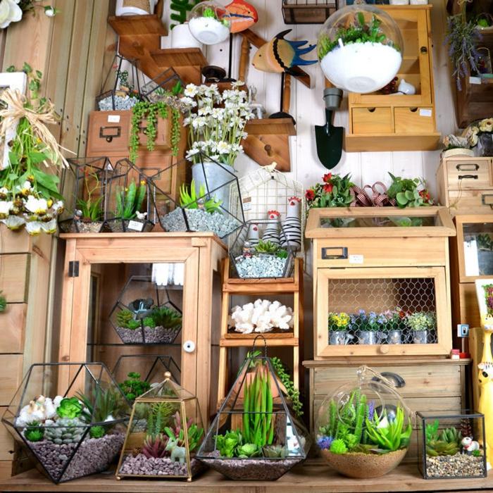 terrarium suspendu, étagères en bois, récipient en verre, terrarium plantes grasses, terrarium succulente