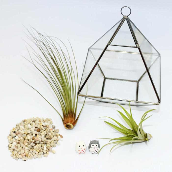 terrarium suspendu, air plant, cailloux décoratifs, figurines hiboux, jardin miniature