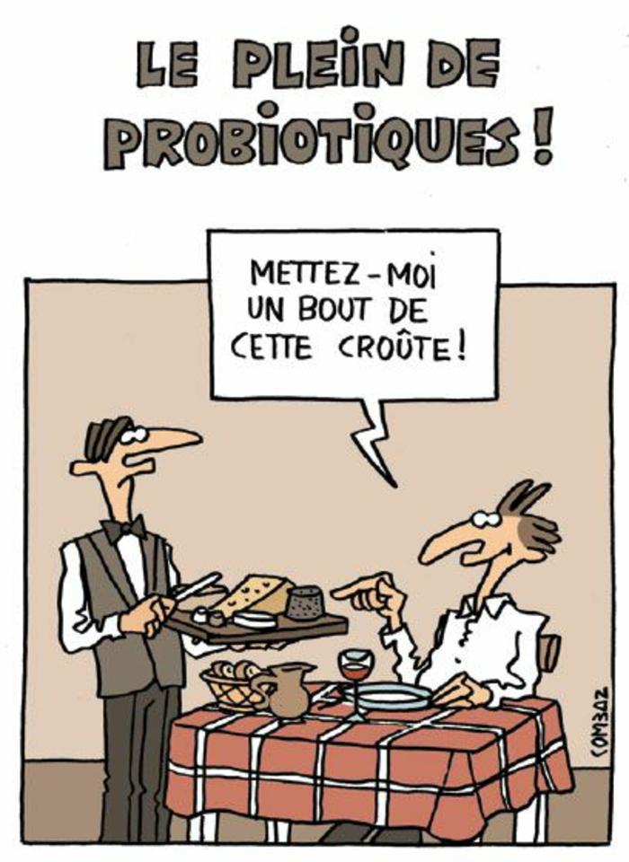 probiotique dans les fromages dans leur croute et pate