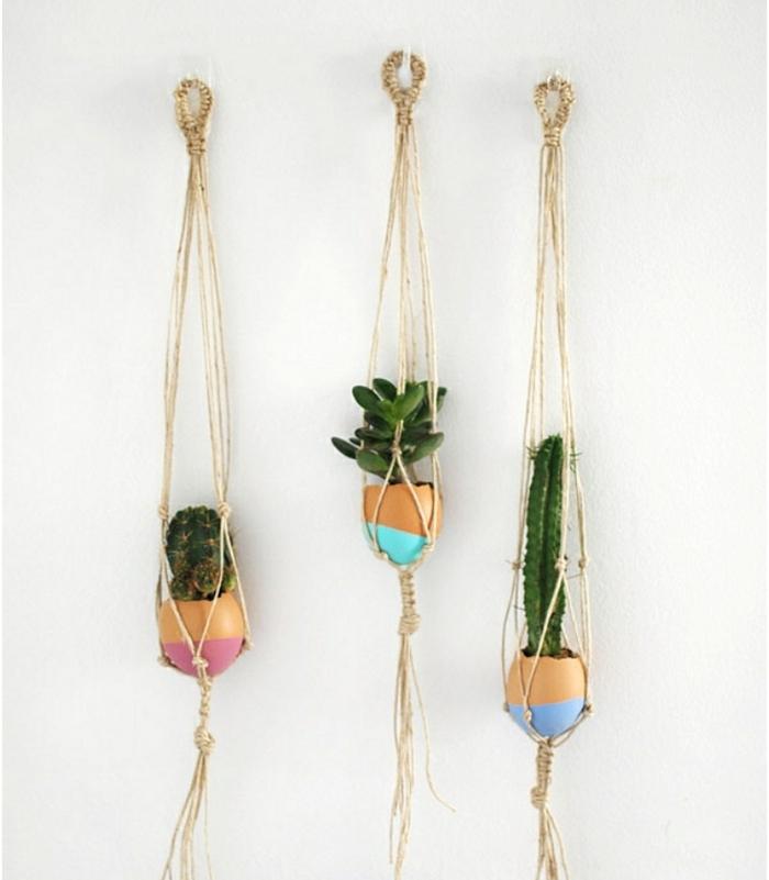 mini terrarium plantes, des coquilles customisées avec de la peinture avec des plantes cactus, succulents, coquille oeuf