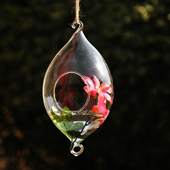plante en bocal fermé, récipient en verre à suspendre, jardin miniature