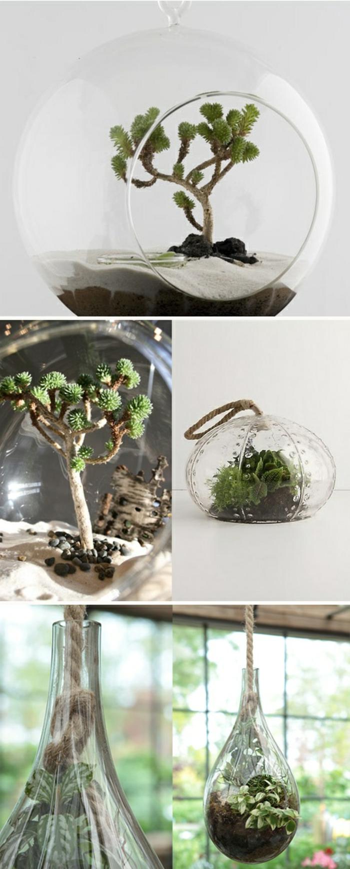 jardin miniature, récipient en verre, terrarium suspendu, sable blanc, terreau