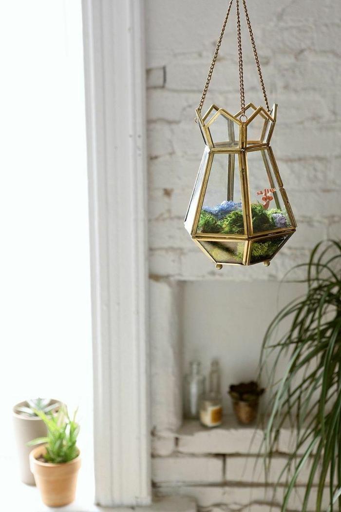 terrarium suspendu, plantes vertes, pot de fleur céramique, murs en briques, terrarium végétal