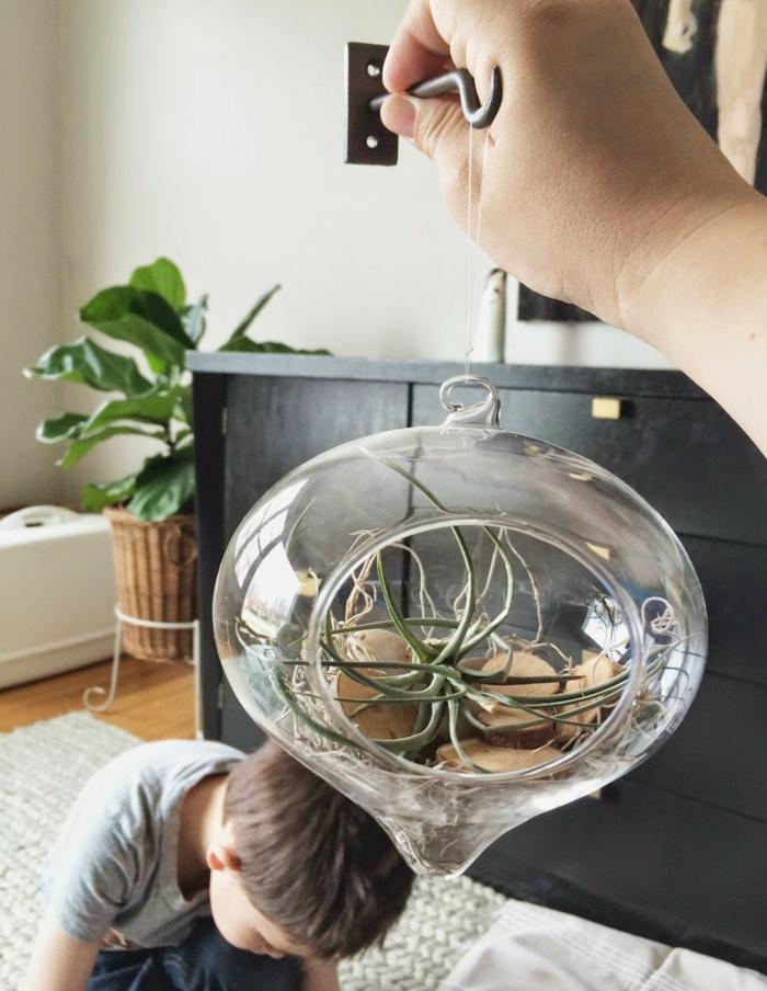 boule en verre à suspendre, tapis moelleux, plantes vertes, armoire noire, parquet en bois