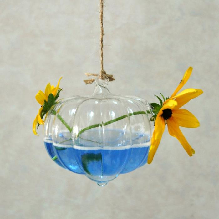 plante bocal, corde longue, faire un terrarium, récipient en verre à suspendre