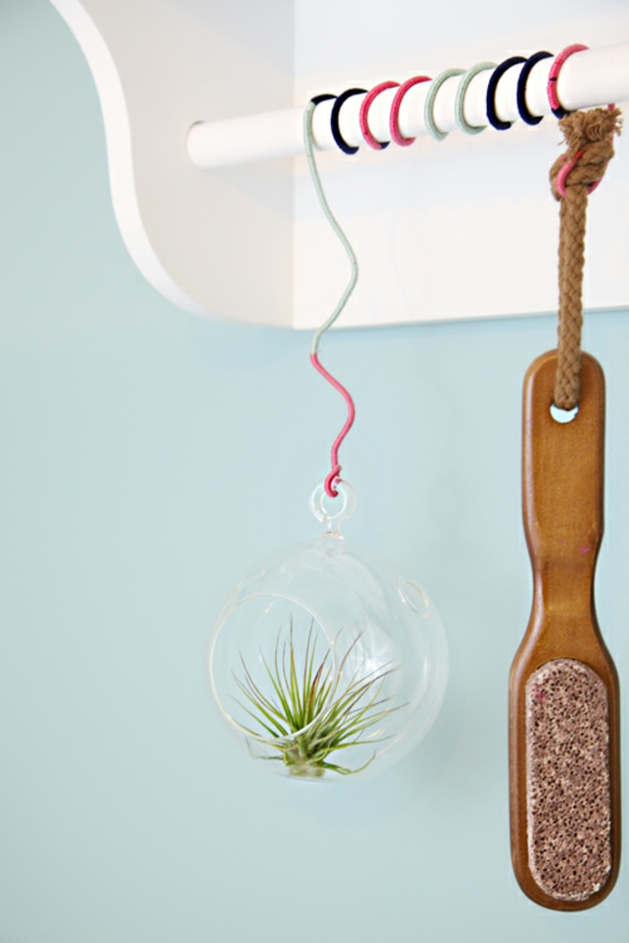 boule en verre à suspendre, murs blues, air plant, terrarium suspendu