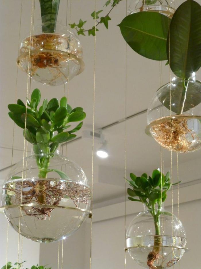 faire un terrarium, boule en verre à suspendre, jardin miniature, plafond blanc
