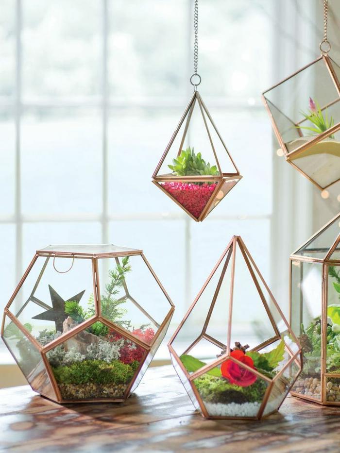 terrarium végétal, récipient en verre, grande fenêtre, table en bois, jardin miniature