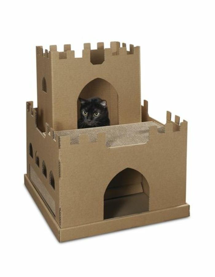 abri pour chat formé avec deux caisses de carton, chat noir