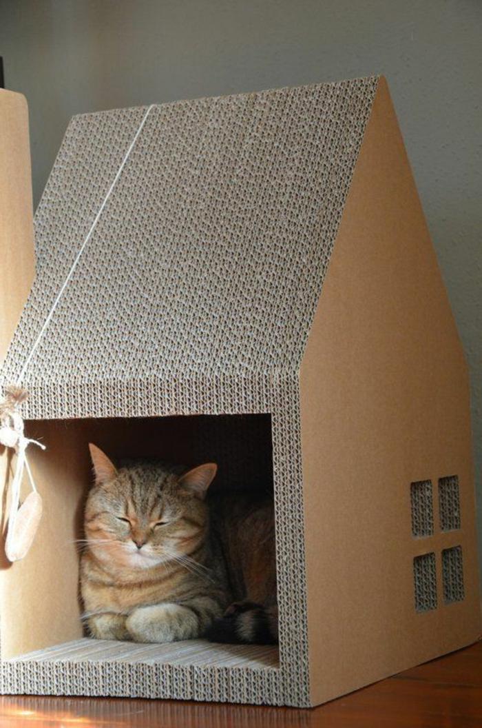 maisonnette chat, chat endormi dans sa niche maisonette de chat