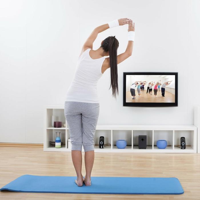 comment perdre du poids, tapis bleu pour fitness, étagère bleu, parquet en bois, jeux vidéo pour maigrir