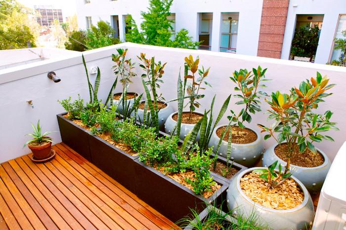 permaculture balcon potager surélevé sur la terasse