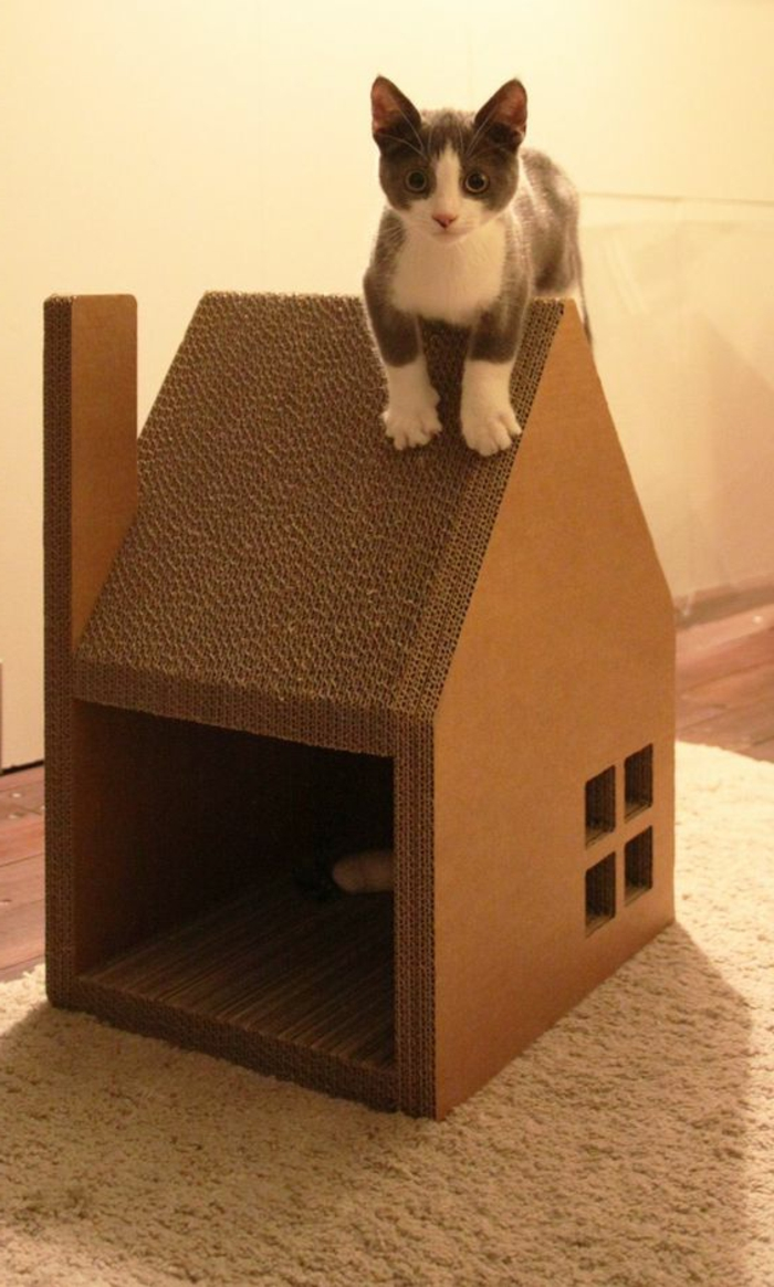cabane a chat avec toiture et cheminée et mignon chaton sur le toit