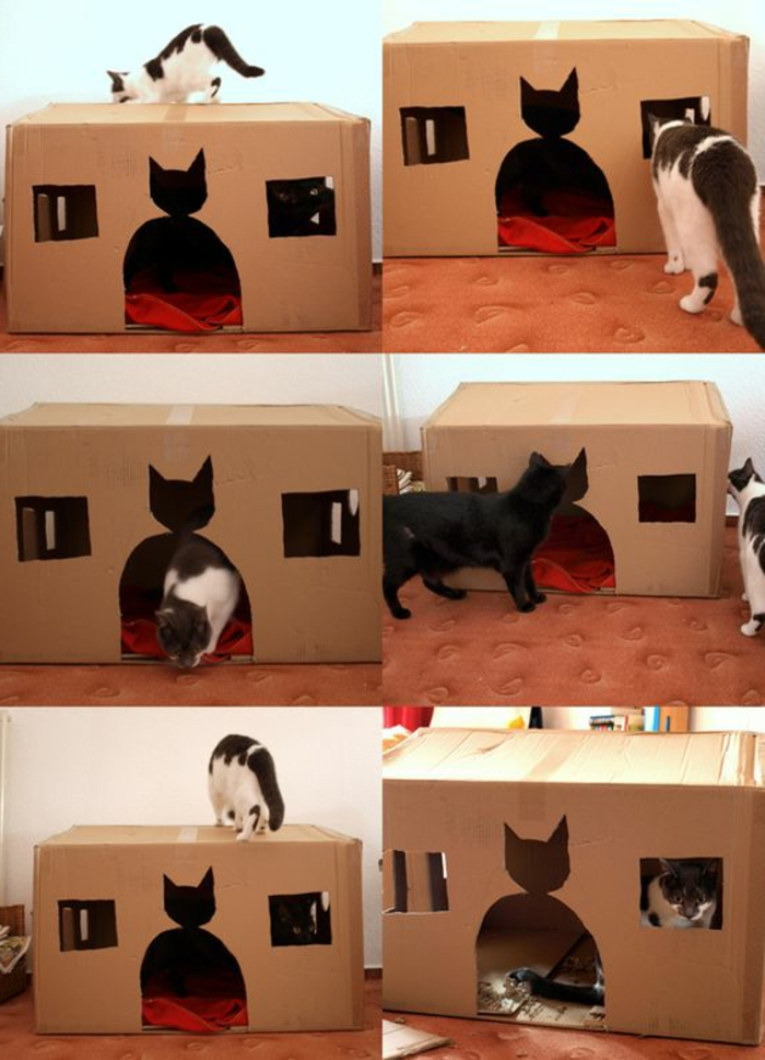 cabane a chat en carton, design simple, porte en forme de chat