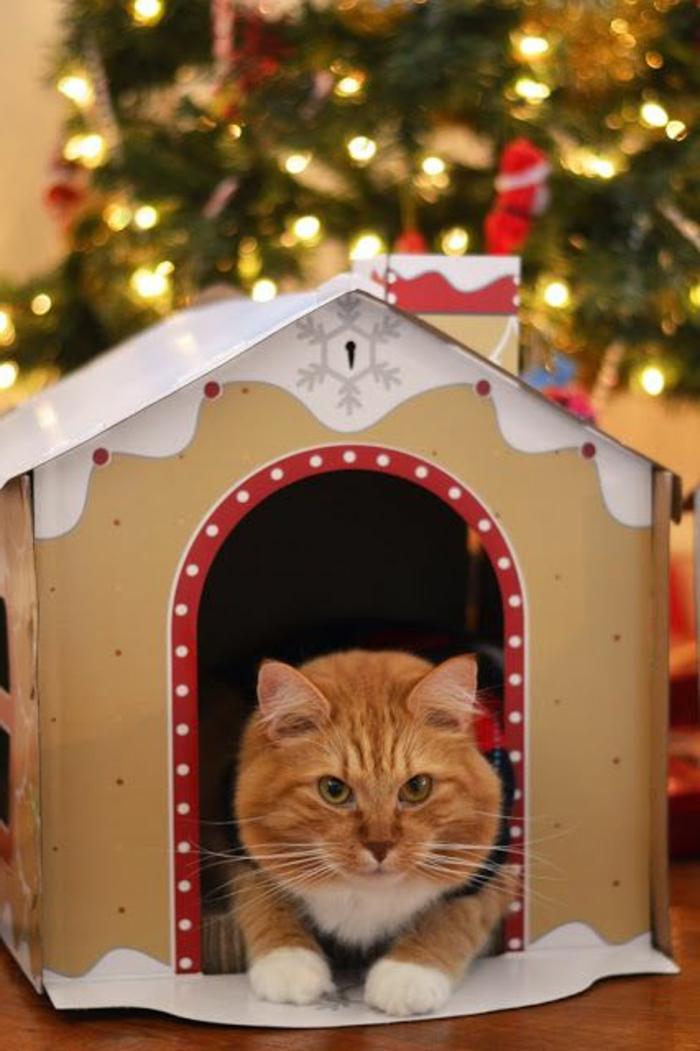 cabane a chat sous un sapin de noel décoré, grand chat roux à la porte
