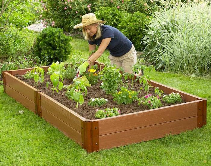 carré de potager pas cher en bois pour jardin