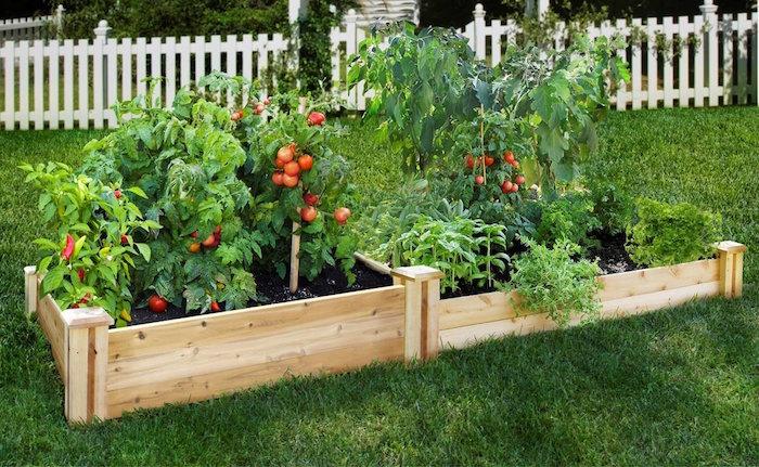 potager surélevé en bois carré pour jardin