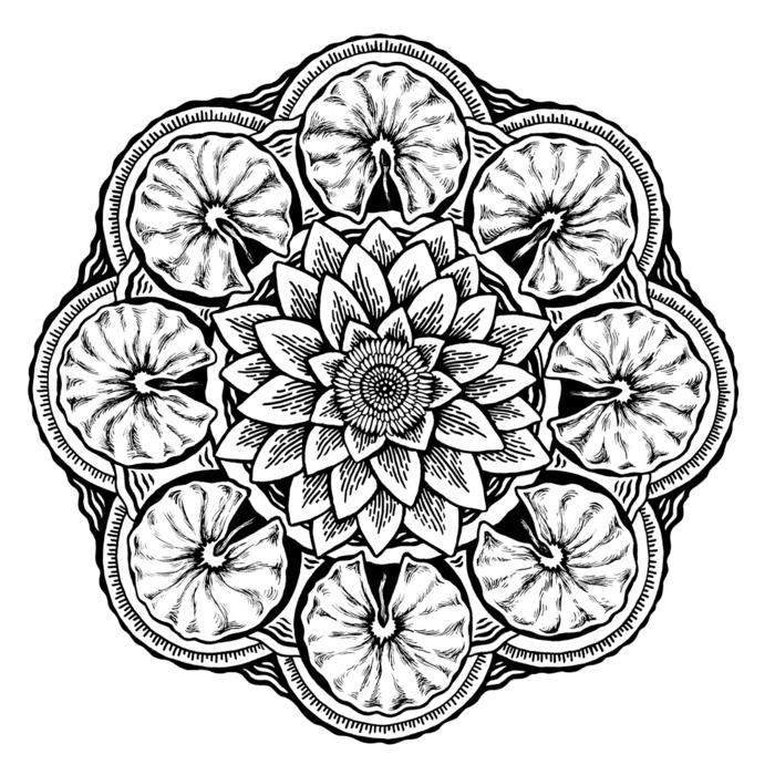 comment dessiner une rosace, motifs floraux, cercles, dessin mandala en blanc et noir, feuilles de fleurs