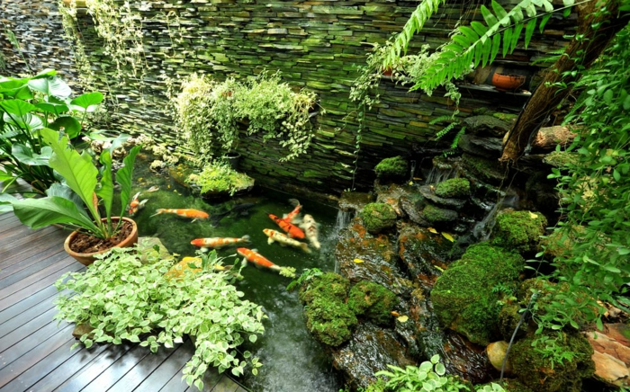 jardin zen japonais, broussailles vertes, bassin de poissons rouges, cascade d'eau, clôture en pierre