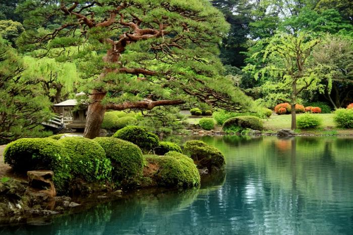 idee deco jardin, arbres, broussailles vertes, lac dans le jardin zen, lanterne en pierre zen